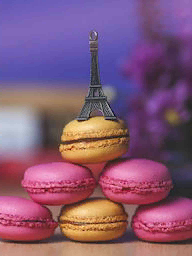 Word City PARIS MACARONS