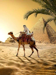 Word City GIZA BEDOUIN