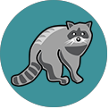 Word Camp Racoon answers