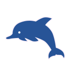 Word Spark Hexa DOLPHIN answers