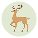 Wordful Hexa DEER answers