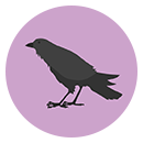 Wordful Hexa CROW answers